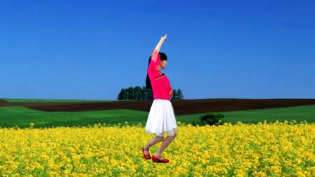点击观看《流行情歌 中老年广场舞视频大全《油菜儿花开》》