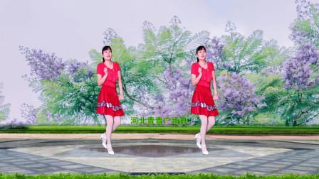 点击观看《河北青青广场舞《鸟儿对花说》背面含口令分解免费教程》