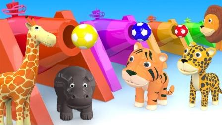 巴士汽车玩具运送动物伙伴们