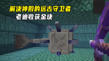 我的世界1.16联机211:轻松搞定神殿的远古守卫者,老迪收获金块
