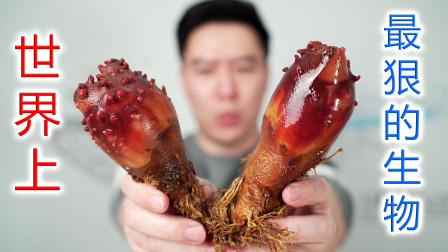 """世界上最狠的生物""""海鞘"""",会吃自己的大脑,做刺身非常好吃"""