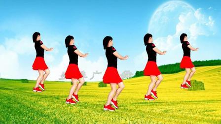 动感时尚广场舞《草原的月亮》入门32步单人水兵舞附正反面教学口令