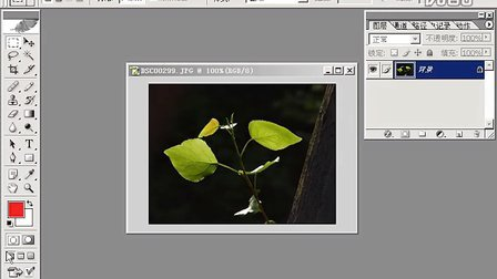 Photoshop从头学起第05集