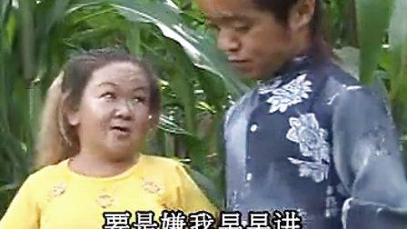 云南山歌剧 第二集图片