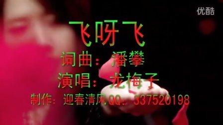 2012 新歌推荐 网络伤感歌曲 飞呀飞 龙梅子mv图片