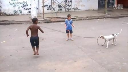 逆天了!汪星人帮小男孩甩跳绳!