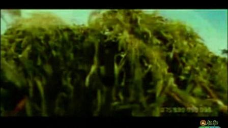 【高清视频】生物高三《进化》