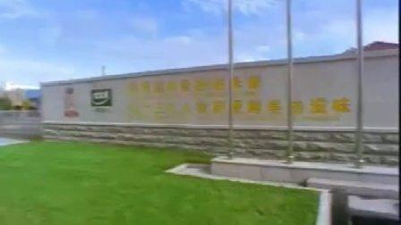 自制广告宣传-200X年太太乐广告·形象宣传片