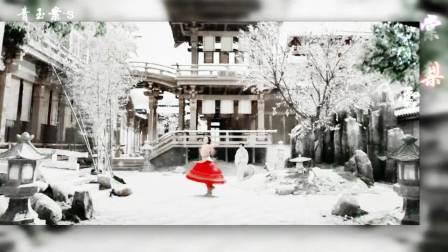 古装美女群像-棠梨煎雪