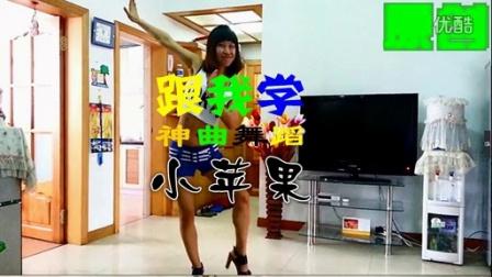 人气超江南Style神曲小苹果舞蹈裴涩琪广场舞小苹