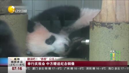 """翻滚吧!""""香香""""公主!  日本:大熊猫""""香香""""将与公众见面 第一时间 171219"""