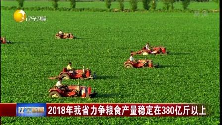 2018年我省力争粮食产量稳定在380亿斤以上 辽宁新闻 180227