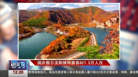 国庆假日沈阳接待游客827.5万人次 说天下 20181009 高清版