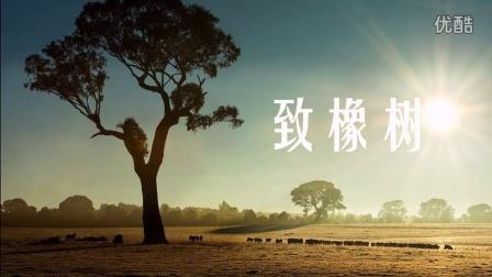 配画诗朗诵——致橡树·舒婷(意次元王志平)