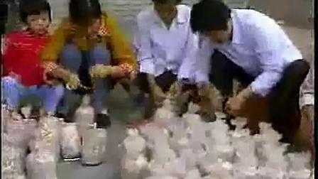 木耳的产生和平菇产生有什么区别、平菇木耳栽培技�c,食用菌shiyongjun