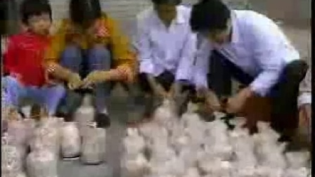 金针菇、香菇、平菇、风尾菇等。良质食用菌菇立体高产栽培技�c,食用菌shiyongjun