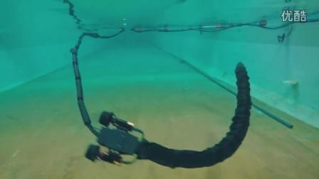 水下机器蛇装上推进器,灵活!
