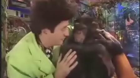 比克曼科学世界/比克曼科学世界,77,黑猩猩与视力检查播放:1,415时长:21:5473...