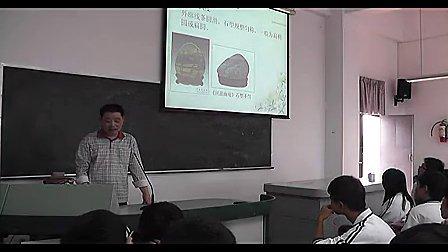 高中综合实践 《赏玩奇石》 高中通用技术课堂实录教学视频