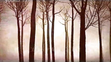 行走两边的落日枯树背景视频素材,影视素材-西橘网