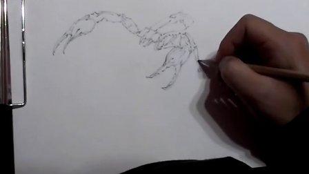 蝎子的画法步骤图解