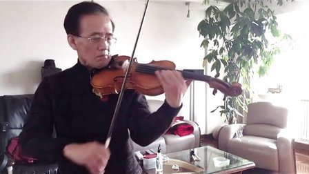 梁祝化蝶 小提琴视频