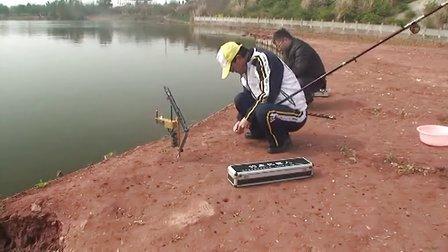 智能钓鱼机器人实战钓鱼视频