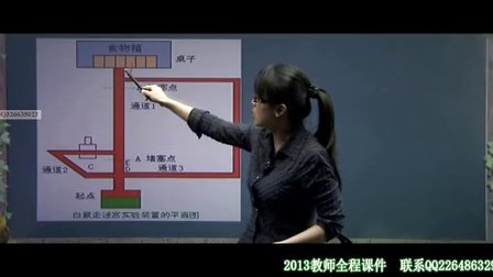 冀芳教育心理学基础精讲06