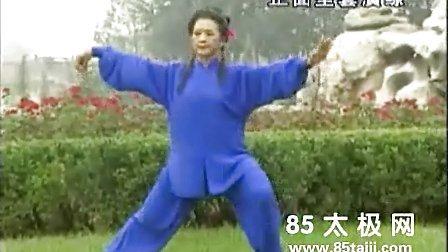 王天玉传统杨氏85式太极拳
