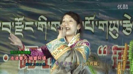 莲宝叶则杯藏歌大赛之索兰卓玛唱天上的西藏