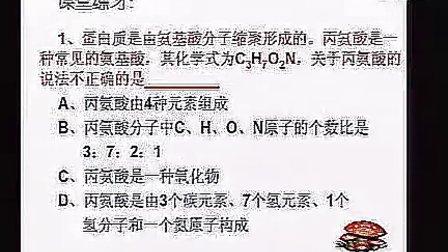 九年级初中化学优质课展示