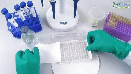 酶联免疫吸附实验(elisa)