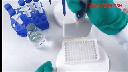 酶联免疫法elisa实验操作技巧