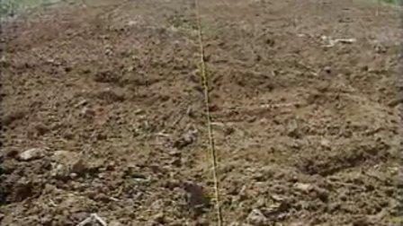 玉米覆膜栽培技術
