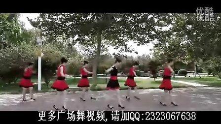 专辑:云裳广场舞图片