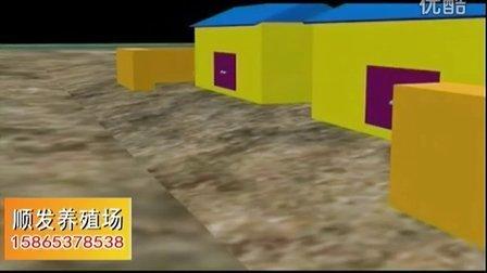 肉牛养殖技术肉牛西门塔尔牛养殖视频