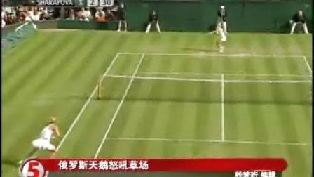 温网:新款网球裙 莎拉波娃怒吼草场