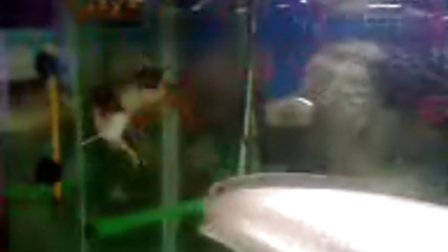 金龙鱼07年12月30日手机拍摄