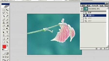 Photoshop从头学起第10集