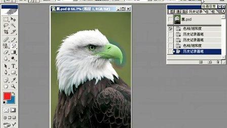 Photoshop从头学起第20集