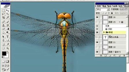 Photoshop从头学起第55集