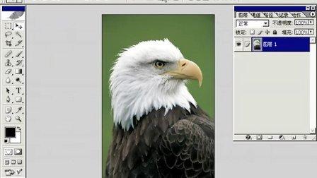 Photoshop从头学起第57集