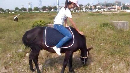 美女骑马4