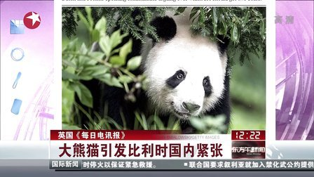 英国《每日电讯报》:大熊猫引发比利时国内紧张[东方午新闻]