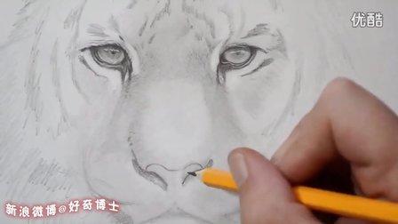 虎头铅笔画步骤
