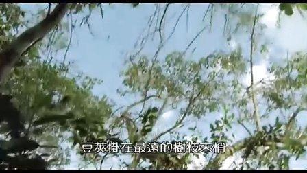 动物世界 bbc纪录片