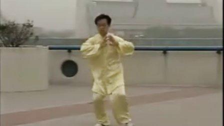 陈氏太极拳全套功法及详解专辑动作教学-视频千松扫尾分解图片