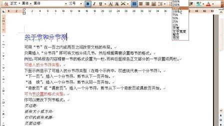 word2003视频教程03