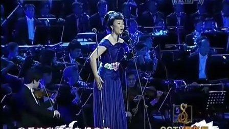 王丽达《我的爱将与你相伴终生》(王丽达独唱音乐会)