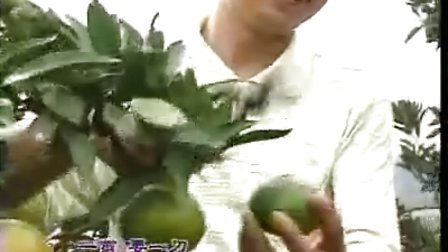 首届中国·常德桃花源旅游节